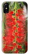 Bottlebrush Tree IPhone Case