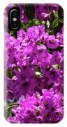Bougainvillea Blooms IPhone Case