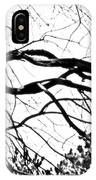 Bound Together In A Love Knot IPhone Case
