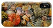 Bountiful Fall Harvest IPhone Case