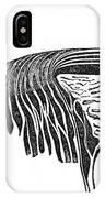 Bowmans Membrane, Retinal Layers, 1842 IPhone Case