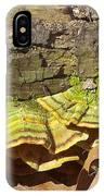 Bracket Fungus IPhone Case