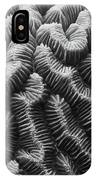 Brain Coral Details IPhone Case