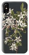 Branch Of A Flowering Azalea, M. De Gijselaar, 1831 IPhone Case