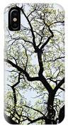 Branches Against Sky In Spring Outback IPhone Case