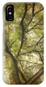 Branching Upward IPhone Case