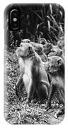 Brazil: Monkeys IPhone Case