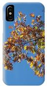 Bright Autumn Branch IPhone Case