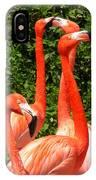 Bright Flamingos IPhone Case