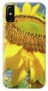 Bright Sunny Happy Yellow Sunflower 10 Sun Flowers Art Prints Baslee Troutman IPhone Case