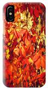 Bright Sunny Red Autumn Plants IPhone Case
