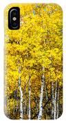 Brilliant Aspens IPhone Case