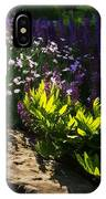 Brilliant Green Sunshine - Impressions Of Spring IPhone Case