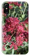 Brilliant Red Blooming Phlox Flowers In A Garden IPhone Case
