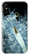 Brine Shrimp Artemia Salina IPhone Case