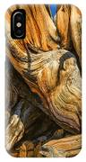 Bristle Cone Pine Tree White Mtns Ca Color Img 6799 IPhone Case