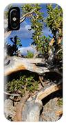 Bristlecone Great Basin Landscape IPhone Case