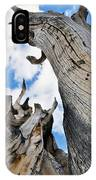 Bristlecone Great Basin Portrait IPhone Case