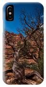 Bristlecone On Park Avenue IPhone Case