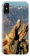 Bristlecone Pine Down IPhone Case