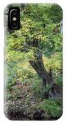 Broken Branches IPhone Case