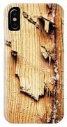 Broken Old Stump Spruce IPhone Case