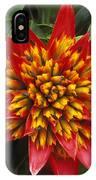 Bromeliad Blooming IPhone Case