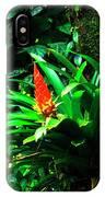 Bromeliads El Yunque  IPhone Case