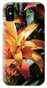 Bromeliads IPhone Case