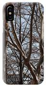 Brooklyn Bridge Thru The Trees IPhone Case