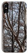 Brooklyn Bridge Thru The Trees IPhone Case