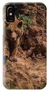 Brown Bear Watches From Steep Rocky Outcrop IPhone Case