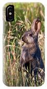 Brown Bunny IPhone Case