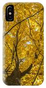 Brown County Colors IPhone Case