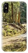 Brown Dirty Road Under Spring Sun Rays IPhone Case