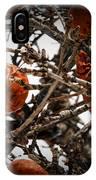 Brown Fruit Abstract IPhone Case