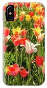 Brushed Tulips IPhone Case