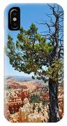 Bryce Canyon Fairyland Point Portrait IPhone Case