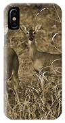 Buck And Doe In Sepia IPhone Case
