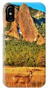 Buck And Flatirons IPhone Case