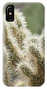 Buckhorn Cholla IPhone Case