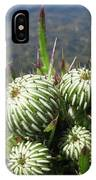 Budding Thistle IPhone Case