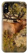 Bull Elk Bugling Among The Rocks IPhone Case