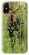 Bull Moose Guards The Aspen IPhone Case