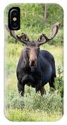 Bull Moose Stands Guard IPhone Case