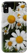 Bunch Of Daisy IPhone Case