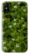 Bunchberry Carpet IPhone Case