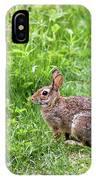 Bunny Rabbit IPhone Case