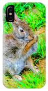Bunny Secrets IPhone Case