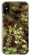 Burgandy Liliacs II IPhone Case
